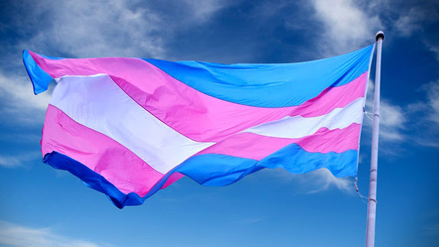 Resultado de imagem para Transexualidade não é doença. Foi retirada da lista da OMS