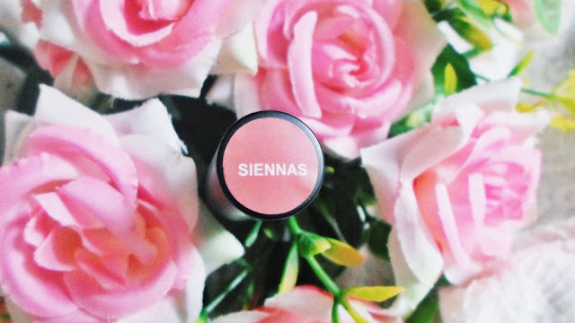 EVER BILENA MATTE LIQUID LIPSTICK IN SIENNAS (REVIEW)