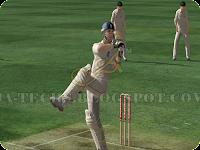 Ashes Cricket 2009 Snapshot 7