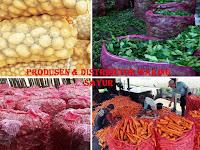 Mengenal Lebih Dekat Manfaat & Fungsi Dari Waring Sayur