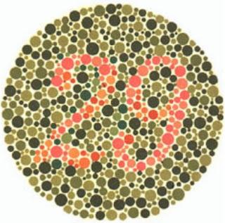 test buta warna 10 plate