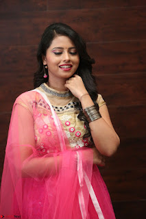 Geethanjali sizzles in Pink at Mixture Potlam Movie Audio Launch 048.JPG