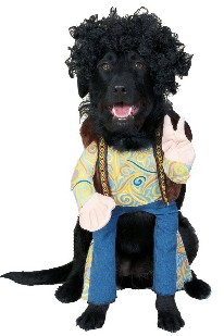 An Occupy Wall Street costume would be more trendy. Hippies were anti-establishment and they called cops  pigs  too. I suppose the Hippie costume fits the ...  sc 1 st  Freedom Eden - Blogger & FREEDOM EDEN: Halloween Costumes for Dogs