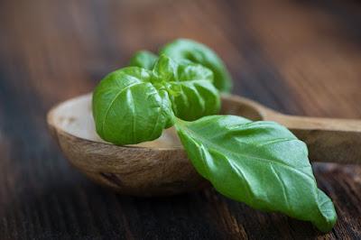 Cara menghilangkan ketombe dengan daun kemangi
