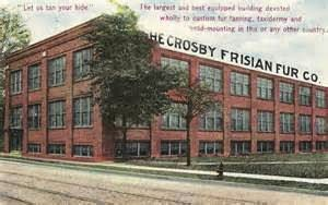 postcard of Crosby Frisian Fur Company