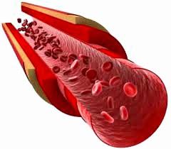 El secreto de Presión arterial normal