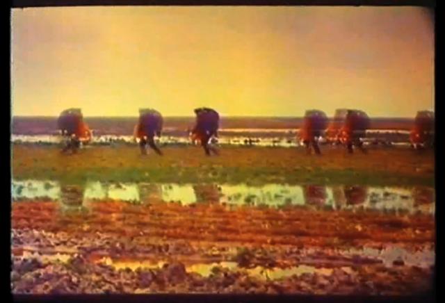 https://vimeo.com/198059606
