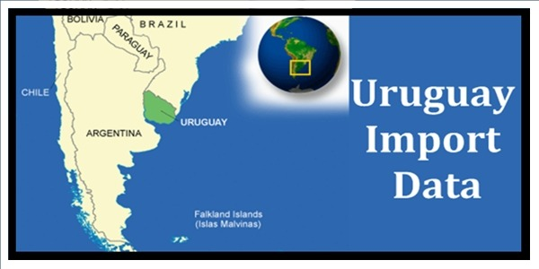 How to make use of Uruguay import data to find new market
