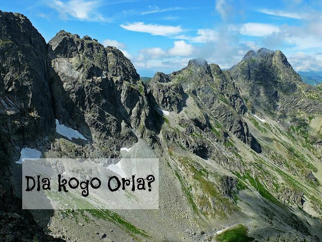 http://www.rudazwyboru.pl/2014/06/dla-kogo-orla-perc-plus-sow.html