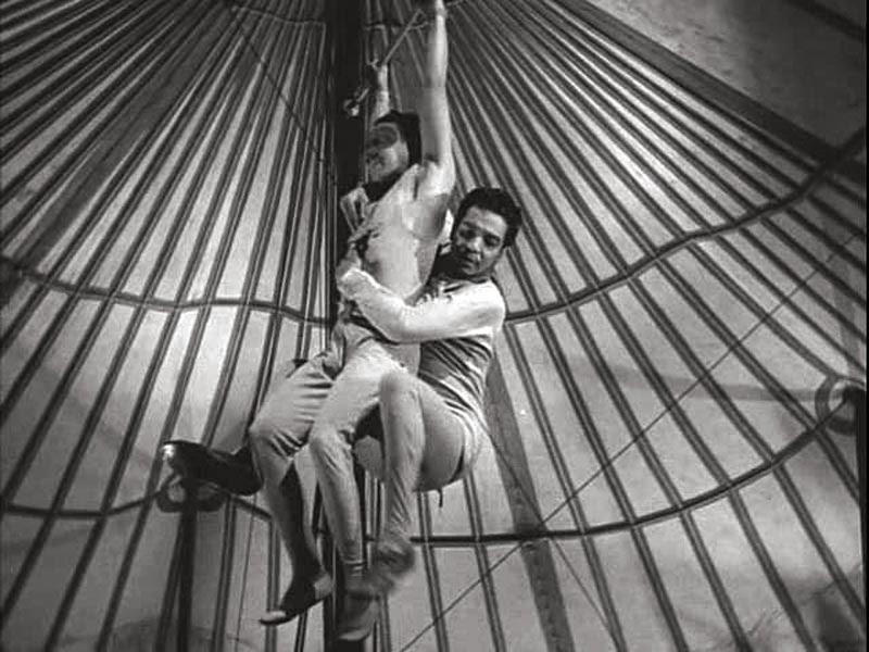 Cirkus halligalli sebesség társkereső