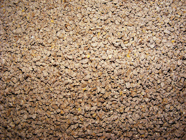 Above is a close up of Worlds Best Cat Litter