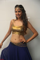 Malvika Raaj in Golden Choli and Skirt at Jayadev Pre Release Function 2017 ~  Exclusive 054.JPG