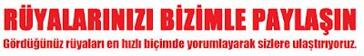 http://www.ruyatabirlerix.com/p/iletisim.html