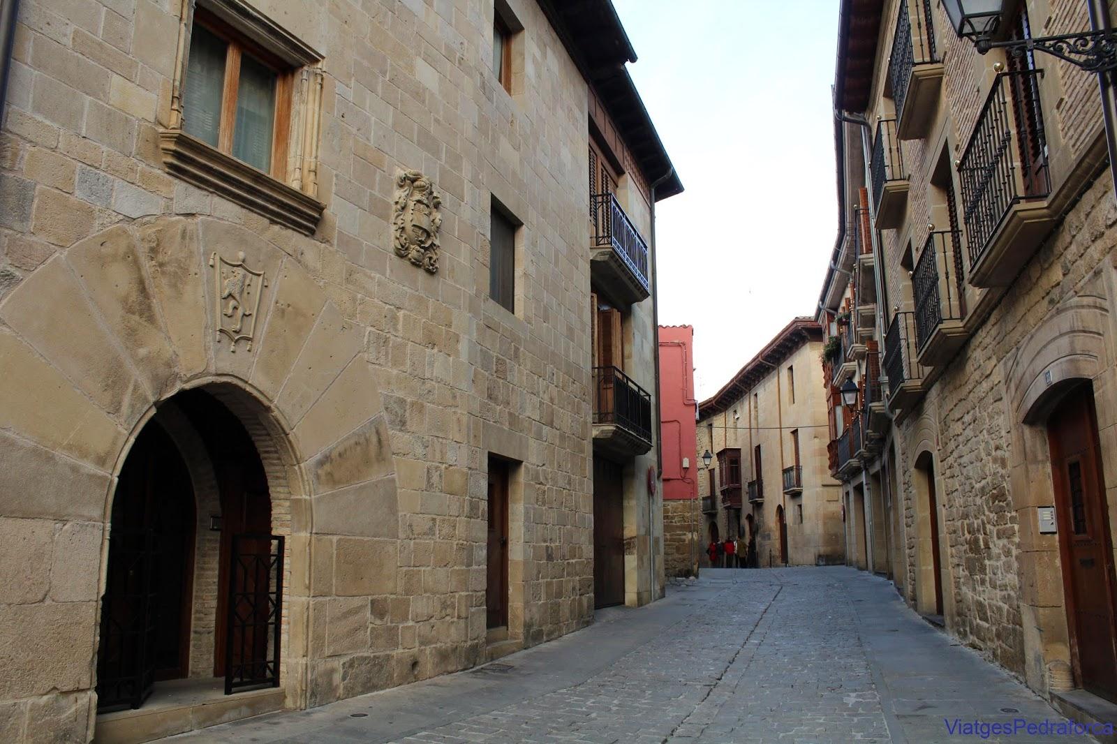 Nucleo antiguo de Tafalla Palacio de Tafalla
