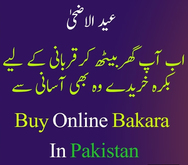 Buy Online Bakra In Pakistan