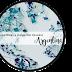 Iniciativa: Blog e Instagram (Book) Argentina