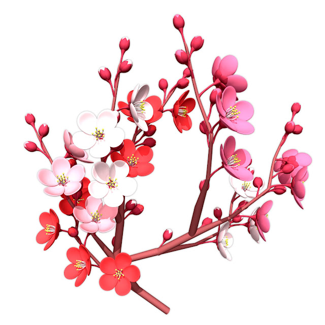 Chinese New Year Flowers | Happy New Year 2015