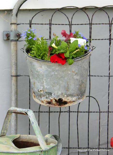 garden junk, metal bucket, garden gate, annuals, petunias, upcycled, http://bec4-beyondthepicketfence.blogspot.com/2016/05/junk-planters.html