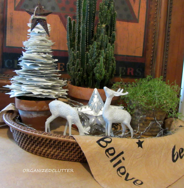 Houseplants and Christmas Decor