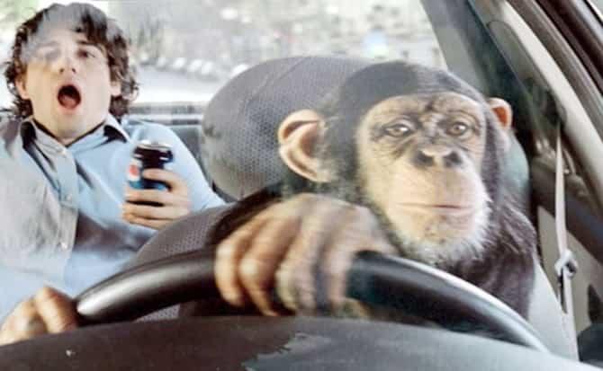 Manejar, vehículos, trámites