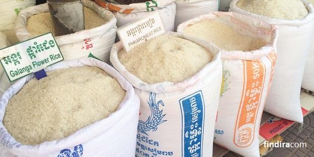contoh beras sembako