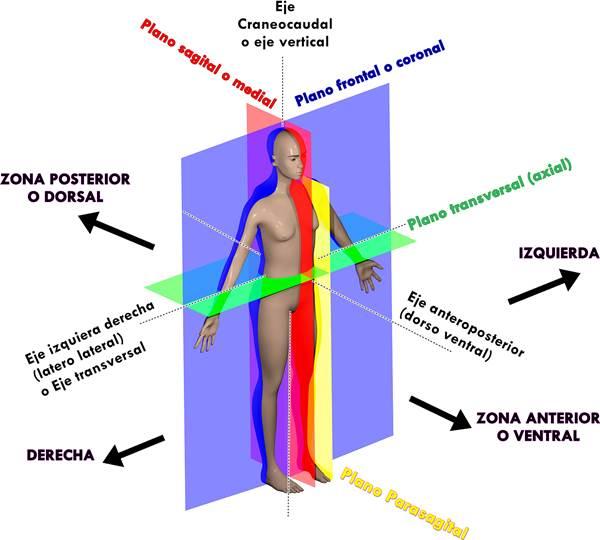 SCIENCE OF LIFE BY ADRIANA: TEMARIO-EXAMEN-MENSUAL-4TOAÑO-REBAZA