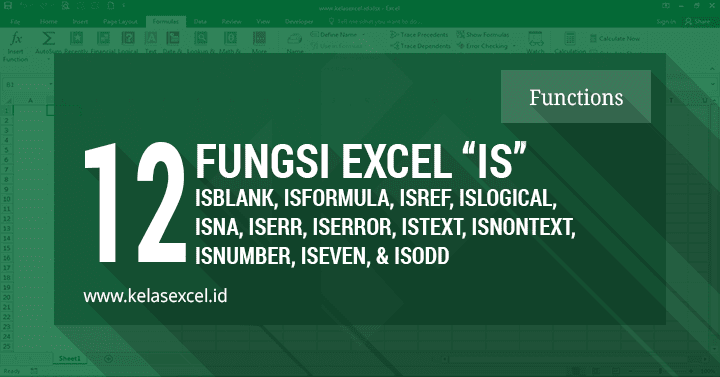 12 Fungsi IS (ISNA, ISBLANK, ISERROR, ISTEXT, Dll) Pada Microsoft Excel