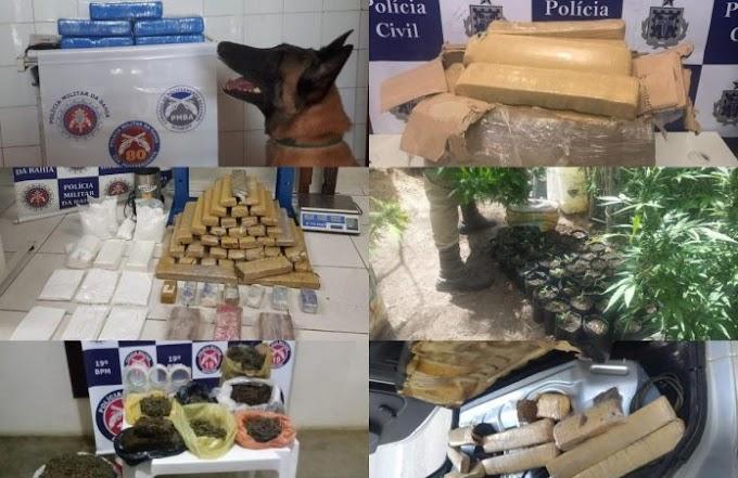 Em cinco dias, polícia baiana apreende 212 kg de entorpecentes
