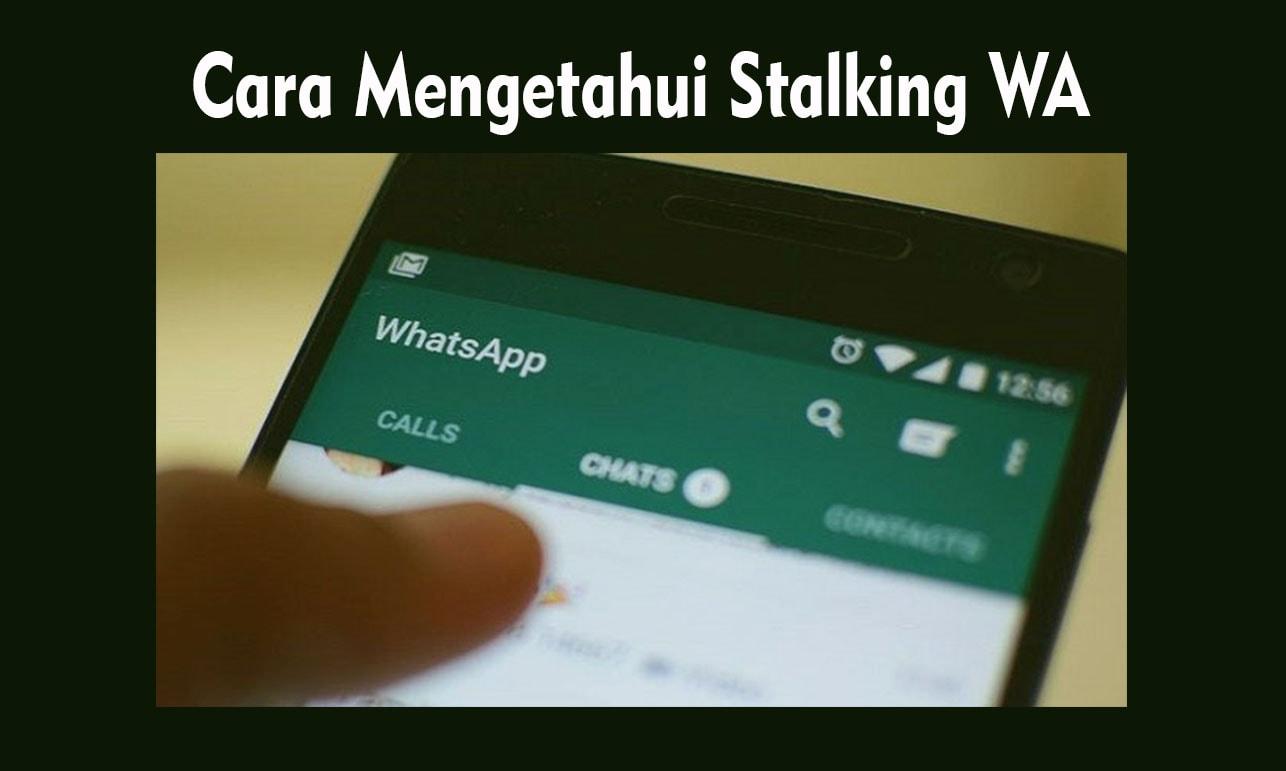 cara lihat kontak yang sering stalking wa