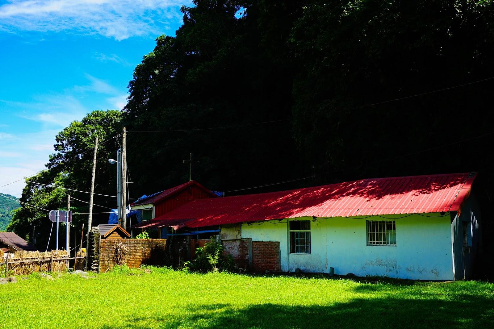 beautyanxiety.com-beautyanxiety.com-cultural-park-forest-DSC08591.jpg