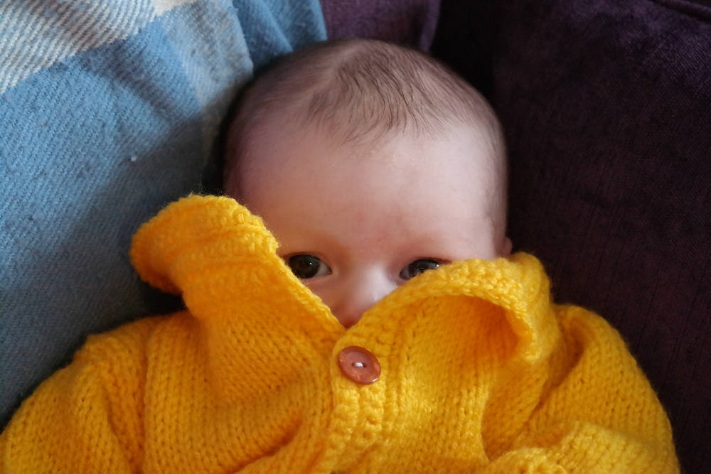 Baby Rooftops peeking over yellow hand knitted cardigan