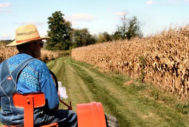 Στο ταμείο 650.000 αγρότες για 2,7 δισ.