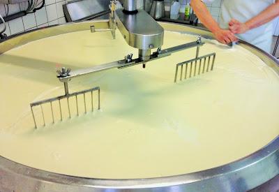 la laiterie de paris, gouda bio, gouda mayenne, fabrication gouda, faire son fromage, faire son fromage, blog fromage, blog fromage maison, fromage maison, earl arc en ciel, décaillage