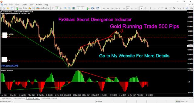 FxGhani Unique Divergence Indicator.