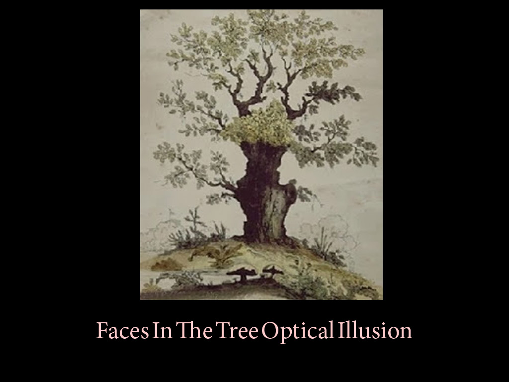 10 Most Exciting Face Optical Illusion