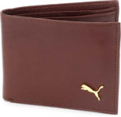 Puma Men Genuine Leather Wallet Minimum 70% Off From Rs 370 at Flipkart deal by rainingdeal.in