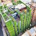 El jardín vertical más grande del mundo florece en el corazón de Bogotá