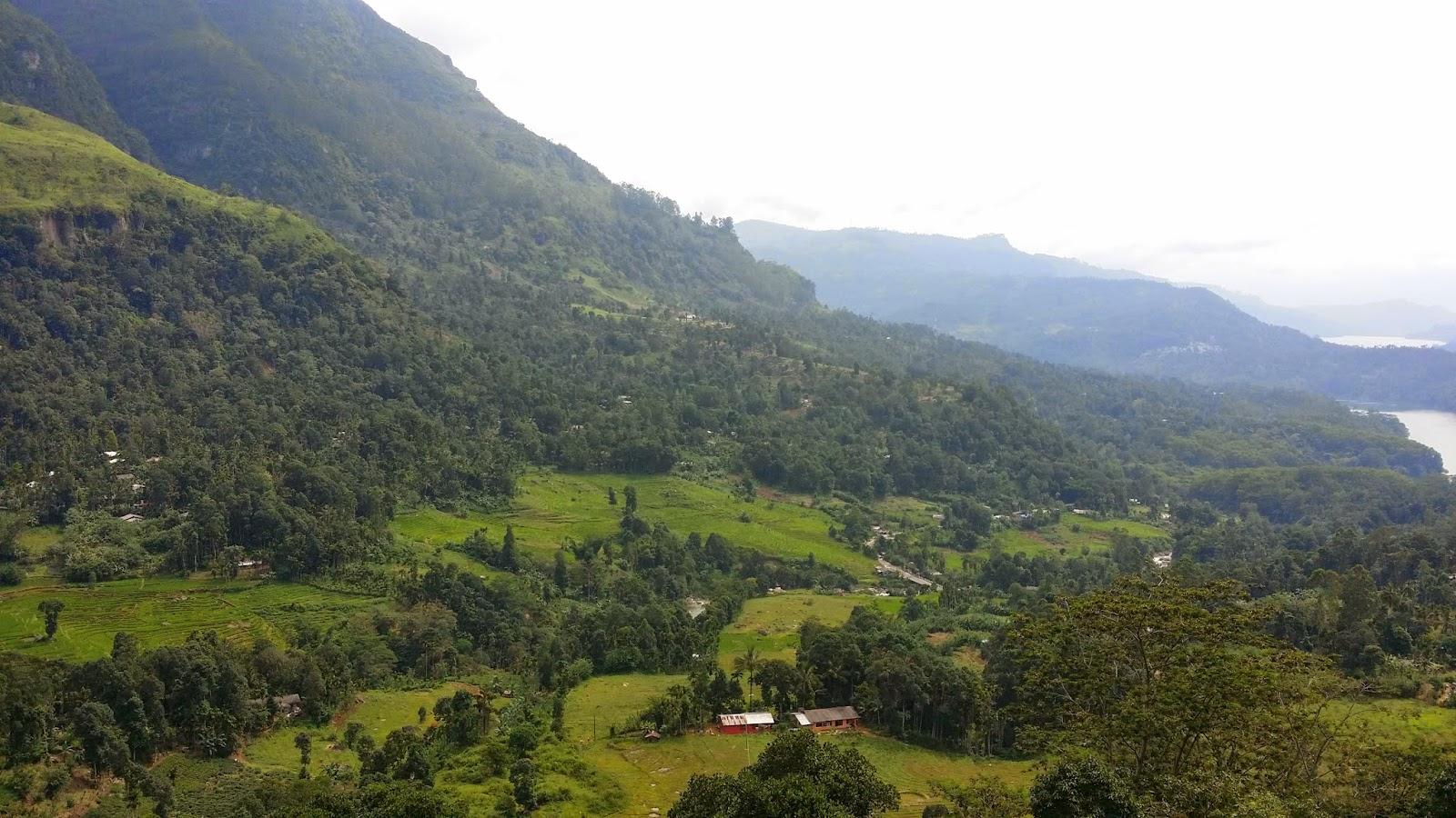 Paisajes de Ella (Hill Country de Sri Lanka)