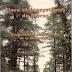 Flore et écosystèmes du maroc (Benabid A.) pdf