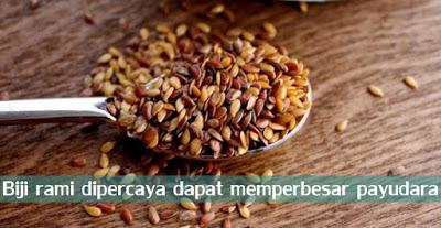 Payudara Sehat Dan Dengan Bantuian biji rami