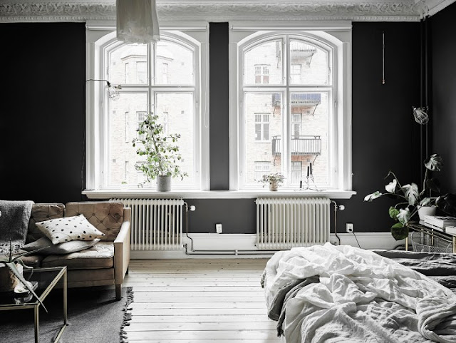 Elegant Black Walls 4