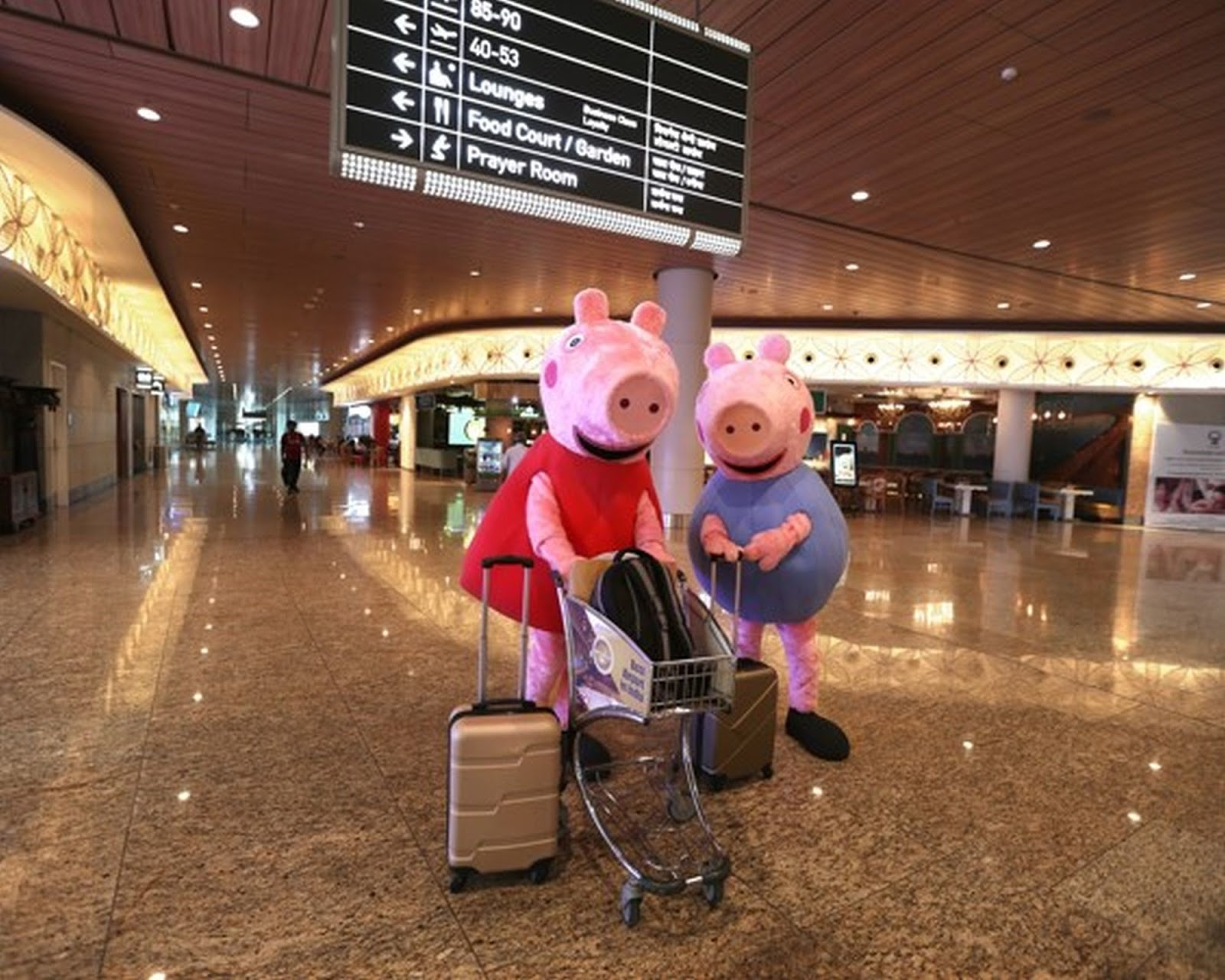 Nickalive Peppa Pig And Her Brother George Finally Arrive In India