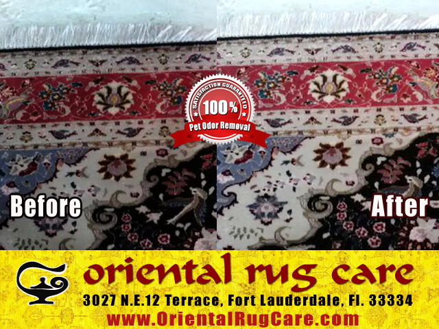 area rug cleaning fort lauderdale