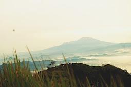 Bukit Sigandul, Jalur Pendakian, & Keindahan Alam