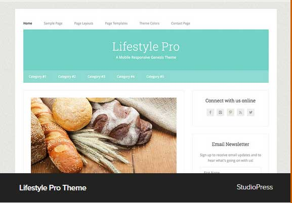Lifestyle Pro Theme Award Winning Pro Themes for Wordpress Blog : Award Winning Blog