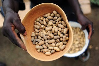 Photo of groundnuts and peanuts