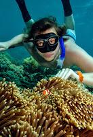 Freediving Australia Cairns Great Barrier Reef - PJ Freediving