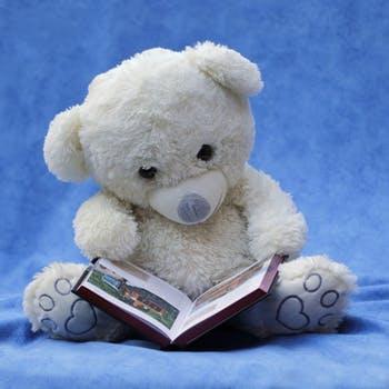 Sweet White Teddy Bear Reading Book
