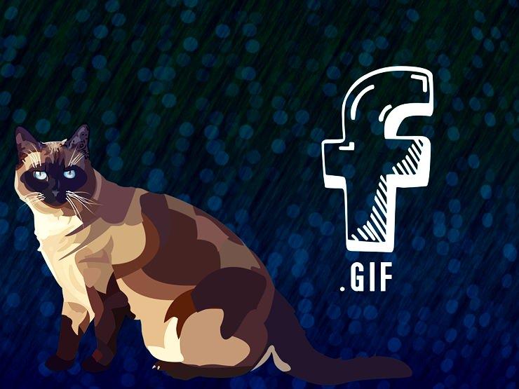 Facebook'a GIF Nasıl Eklenir?