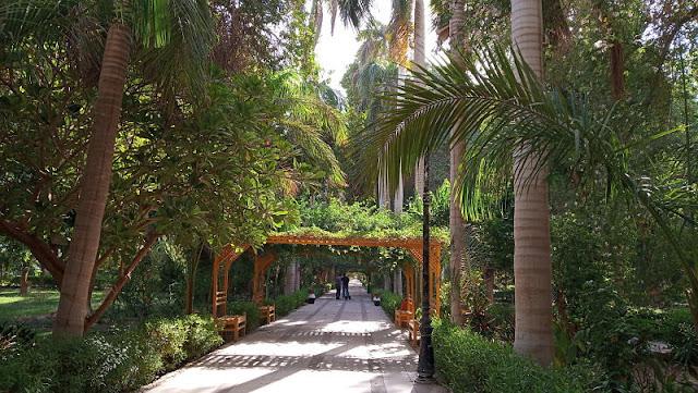 giardino botanico di assuan